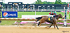 Final Betrayal winning at Delaware Park on 6/15/16