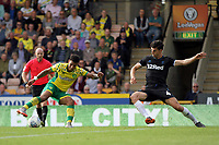 Daniel Ayala of Middlesbrough tries to get a challenge in on Onel Hernandez of Norwich City during Norwich City vs Middlesbrough, Sky Bet EFL Championship Football at Carrow Road on 15th September 2018