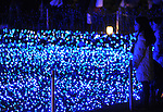 December 2, 2011, Tokyo, Japan - Christmas illuminations - hundreds of thousands of colorful light-emitting diodes - turn Tokyo night into the wonderful world of fantasy at Roppingi's Midtown on Friday, December 2, 2011. (Photo byNatsuki Sakai/AFLO) [3615] -mis-