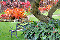A variety of Bromeliads and bench. Maui Tropical Plantation. Maui. Hawaii