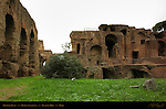 Thermae Severiana Domus Severiana Baths Palatine Hill Rome