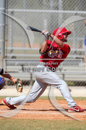 St. Louis Cardinals minor league player Adam Melker #29 during a spring training game vs the New York Mets at the Roger Dean Sports Complex in Jupiter, Florida;  March 24, 2011.  Photo By Mike Janes/Four Seam Images