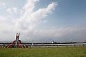 Horse Racing : Takarazuka Kinen 2016