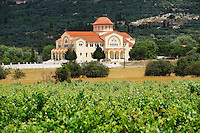 Vineyards & new Orthodox church of Omala. Kefalonia, Ionian Islands, Greece.