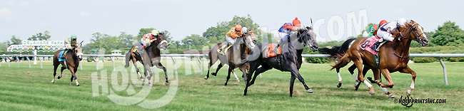 Battlefield Angel winning The Christiana Stakes at Delaware Park on 7/9/14