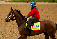 LOUISVILLE,KNY - MAY 04:  State of Honor, Morning works  at Churchill Downs, Louisville, Kentucky. (Photo by Sue Kawczynski/Eclipse Sportswire/Getty Images)