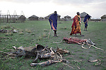 ATEKAL, TANZANIA - NOVEMBER 15: Maasai men stand next to their dead cattle carcasses on November 15, 2009 in their village in Atekal, Tanzania. The village has lost about 300 cattle. This area has been severely affected by drought the last two years and as many as 3-4000 cattle has died in recent months. The Maasai tribe populates the area and many of them has given up on farming and traveled to cities such as Arusha to look for work. Indigenous peoples globally, such as the Maasai in Tanzania and Kenya, are disproportionately affected by the impacts of climate change due to fragile and harsh ecosystems. (Photo by Per-Anders Pettersson)....