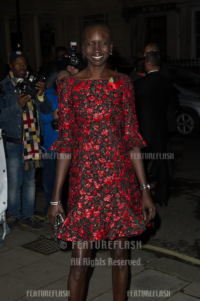 Alek Wek for the Harper's Bazaar Women of the Year Awards 2013<br /> Claridges Hotel, London. 05/11/2013 Picture by: Dave Norton / Featureflash
