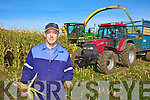 'Its a Maize' - Joe Daly from Valentia pictured here at his first harvest of maize on Valentia Island - probably the most westerly harvest of its kind in Europe...