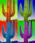 Saguaro Composite #3