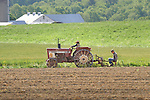 Mennonite farmers on old International tractor planting seed.