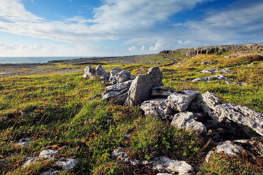 Remnants of stone wall in meadow overlooking Atlantic Ocean, Black Head, The Burren, County Clare, Republic of Ireland