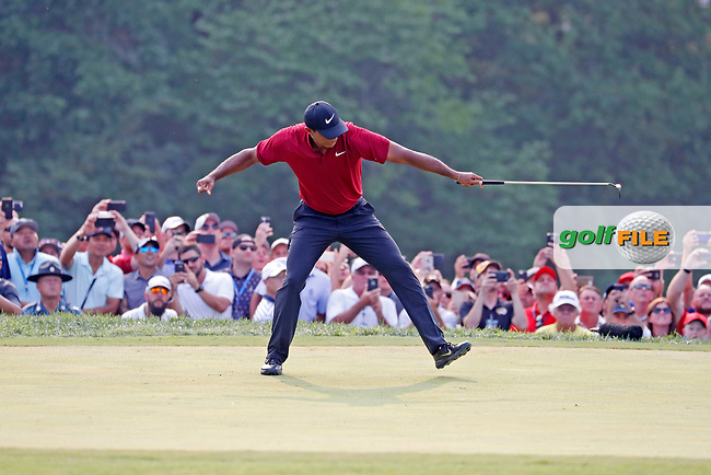 Tiger Woods (USA) reacts to making a birdie putt on the 18th hole during the final round of the 100th PGA Championship at Bellerive Country Club, St. Louis, Missouri, USA. 8/12/2018.<br /> Picture: Golffile.ie | Brian Spurlock<br /> <br /> All photo usage must carry mandatory copyright credit (© Golffile | Brian Spurlock)