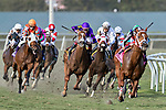 HALLANDALE BEACH, FL - JAN 27:Rainbow Heir #6 with Irad Ortiz Jr. (purple silks) in the irons for trainer Jason Servis finds an opening along the final turn before winning the $175,000 Gulfstream Park Turf Sprint Stakes at Gulfstream Park on January 27, 2018 in Hallandale Beach, Florida. (Photo by Bob Aaron/Eclipse Sportswire/Getty Images)
