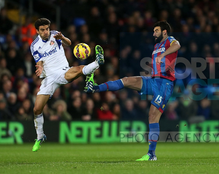 Crystal Palace's Mile Jedinak tussles with Sunderland's Will Buckley<br /> <br /> - Barclays Premier League - Crystal Palace vs Sunderland- Selhurst Park - London - England - 3rd November 2014  - Picture David Klein/Sportimage