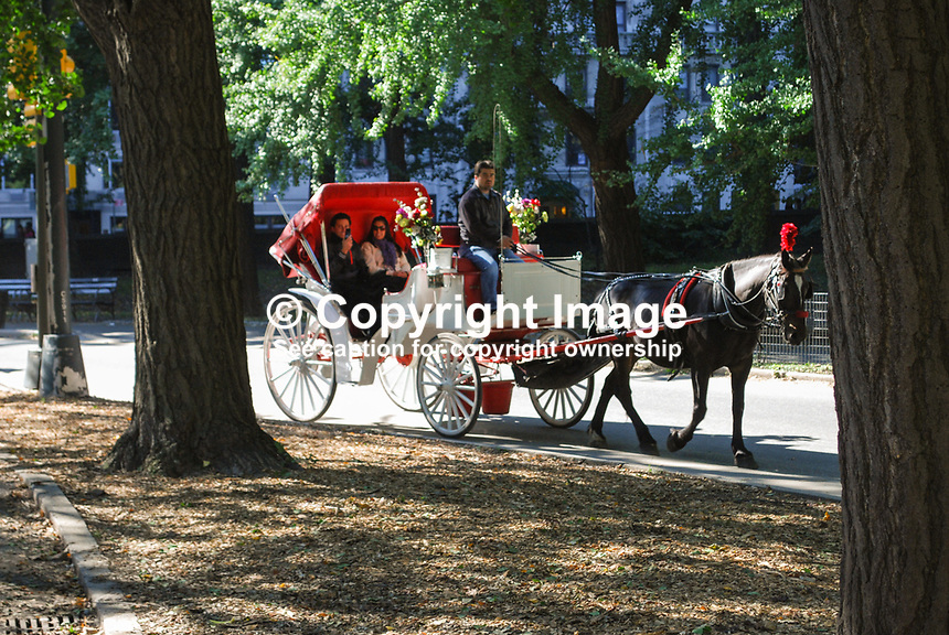 Traditional horse and carriage ride through Central Park, New York, USA. 201110225447..Copyright Image from Victor Patterson, 54 Dorchester Park, Belfast, United Kingdom, UK...For my Terms and Conditions of Use go to http://www.victorpatterson.com/Victor_Patterson/Terms_%26_Conditions.html