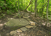 NWA Democrat-Gazette/BEN GOFF @NWABENGOFF<br /> Rock armoring built by volunteers from Ozarks Off Road Cyclists protects a section of trail Saturday, July 6, 2019, on Last Call trail at Kessler Mountain Regional Park in Fayetteville. The Ozark Off Road Cyclists, the local chapter of the International Mountain Bicycling Association, are raising funds through their Kessler Campaign to fund further improvements and future trails at the park.