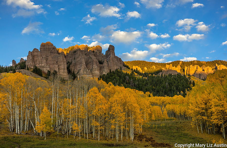 Uncompahgre National Forest, Colorado: Evening light on the cliffs of the Cimarron range and fall aspen groves