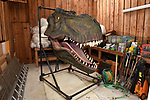 Pictured:  Chris Packham's T-Rex in his garage.<br /> <br /> Wildlife TV presenter Chris Packham is struggling to find a new home - because he needs one big enough to fit his life size T-Rex head.   The Springwatch presenter said he had forgotten just how big the dinosaur was when he accepted the unusual 100kg item as a present.<br /> <br /> As a result, the 2 and a half metre tall replica is too big to fit into his country cottage in Hampshire's New Forest.  The naturalist - who earlier this year presented a BBC show about the dinosaur - is now looking for a new house with a wall big enough to mount the head on.   SEE OUR COPY FOR DETAILS.<br /> <br /> © Simon Czapp/Solent News & Photo Agency<br /> UK +44 (0) 2380 458800