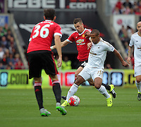 Pictured: Wayne Routledge of Swansea (R) against Morgan Schneiderlin of Manchester United (C) Sunday 30 August 2015<br /> Re: Premier League, Swansea v Manchester United at the Liberty Stadium, Swansea, UK