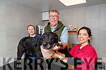 CHRISTMAS DOG APPEAL: Linda Hayes, Bryan Quilter and Brenda Leahy with Choccy and Blackie at Quilters Veterinary, Tralee on Thursday, December 12th last.