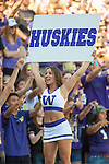 Washington Huskies'  cheer squad cheer against the  Eastern Washington Eagles' at Husky Stadium September 6, 2014 in Seattle. Huskies out lasted the Eagles in a high powered shootout 59-52 in the third highest scoring game in Husky history. ©2014. Jim Bryant  Photo. All Rights Reserved