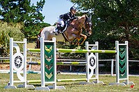 NZL-Briar Burnett-Grant rides Fiber Fresh Veroana. Final-1st. Class 23: Jump Off - POLi Paments Premier League Horse Grand Prix. 2020 NZL-Collinson Forex Premier Show Jumping At Woodhill Sands. Helensville. Sunday 12 January. Copyright Photo: Libby Law Photography