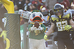 Nov 21, 2015; Eugene, OR, USA; The Duck looks to hand the ball off to Oregon Ducks wide receiver Zac Schuller (82) at Autzen Stadium. <br /> Photo by Jaime Valdez