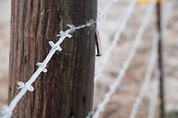 NWA Democrat-Gazette/J.T. WAMPLER Ice coats a barbed wire fence near Tontitown Sunday Feb. 11, 2018. Freezing rain and plunging temperatures left the area frozen most of Sunday. The National Weather Service is calling for slightly warmer temperatures this week with a change of rain.
