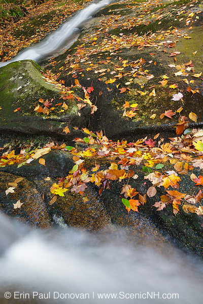 Cascade along Clough Mine Brook, a tributary of Lost River, in Kinsman Notch of Woodstock, New Hampshire USA during the autumn months