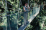 Canopy Walkway with birdwatcher, tourist, 40 meters high, highest walkway in Malaysia, Sabah, jungle treetop.Borneo....