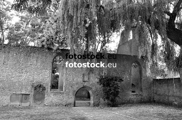 Kirchenruine Liebfrauenkirche (15. Jh.), spätgotisch, Westhofen