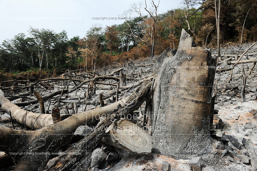 Afrika SIERRA LEONE Western Area Peninsula Forest  , illegale Abholzung von Regenwald fuer Feuerholz Bauholz Plantagen sowie Bauland und Bodenspekulation  | .Africa SIERRA LEONE illegal logging of rainforest at Western Area Peninsula Forest near Freetown , copyright (c) Joerg Boethling