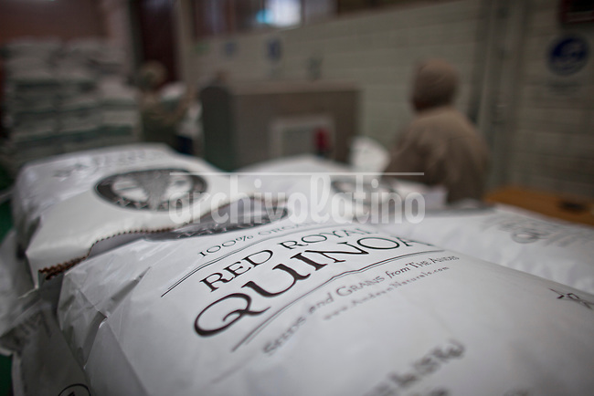 A picture dated April 18, 2013 shows bags of quinoa ready for export in a quinoa manufacturing plant, Jacha Inti in the city of El Alto in Bolivia.  2013  was declared the international year of Quinoa by the UN.  Bolivia is the main producer of quinoa in the world.