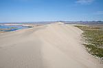 Hanford Reach National Monument, Wahluke Slope, Columbia River, Saddle Mountains, sand dunes, grasslands, sagebrush, Columbia Basin, eastern Washington, Washington State, Pacific Northwest, USA, North America,