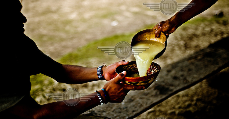 Manioc beer, referred to as 'chicha' or 'nijiamanch'. Chicha forms the backbone of Achuar society constituting not only a huge part of the diet but also the main lubricant of social interaction. Chicha is made from manioc (yuka), firstly the husk is taken off with a machete, the manioc is then washed in the river and boiled in water until it is soft, it is then mashed in a manioc mortar and the pieces are chewed and spat out until the entire mortar is full of liquid. The chicha is then left for 2,3,4 days (depending on the strength desired) to ferment in the saliva enzymes (this can be sped up using plantain leaves wich contain similar enzymes to saliva).