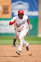 Auburn Doubledays catcher Luis Vilorio (4) running the bases during a game against the Vermont Lake Monsters on July 13, 2016 at Falcon Park in Auburn, New York.  Auburn defeated Vermont 8-4.  (Mike Janes/Four Seam Images)