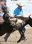 Jake Eary hangs on during the Junior boys calf riding event at the Fallon Junior Rodeo.  Photo by Tom Smedes.