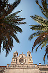Palms at the entrance, Bonany Monastery, Mallorca