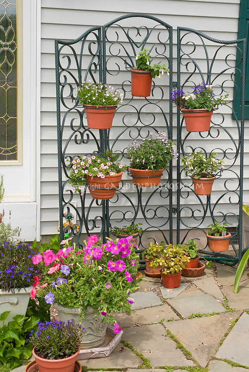 Pot container garden hanging on wire trellis n front of house, petunias, lobelia, etc