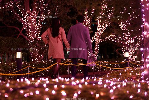 People admire the illuminations at Shinjuku Terrace City on November 16, 2017, Tokyo, Japan. Shinjuku Terrace City Illuminations are seen around Odakyu Line Shinjuku Station. This year marks the 12th year of the illumination event, which can be enjoyed until February 22, 2018. (Photo by Rodrigo Reyes Marin/AFLO)
