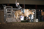APRA/IPRA - Courtland, VA - 3.28.2015 - Bulls