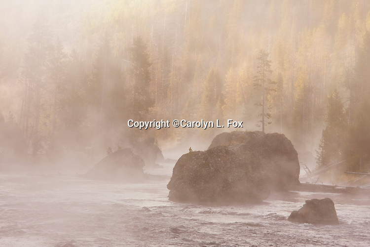 Steam rises off the Firehole River in Yellowstone.