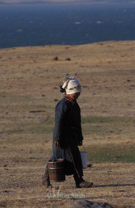 A Tsaatan woman carrying the milk from her reindeer in Northern outer Mongolia/ Russian border.