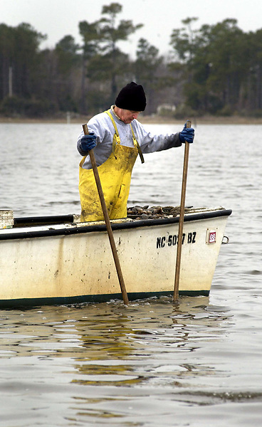 Charlie Antwine operates his oyster tongs from his boat in the Newport River looking for oysters, Wednesday, December 06, 2006. Beckley New_PolluteCharlie