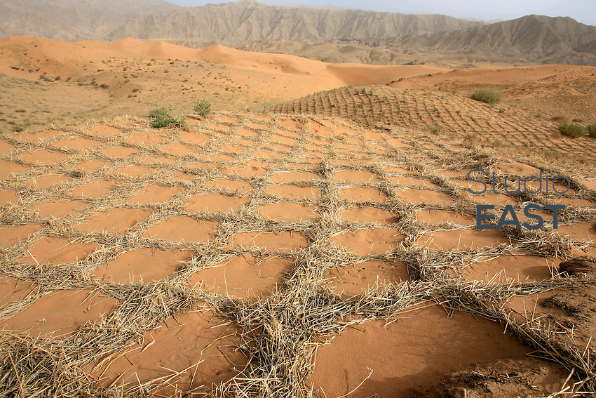 Anti-desertification plantations take the shape of a net of squares in the Tengeli desert, in Ningxia Province, China, on May 8, 2007. China is the only place in the world where desert is shrinking, not expanding, thanks to active anti-desertification campaigns. Photographer: Lucas Schifres/Pictobank