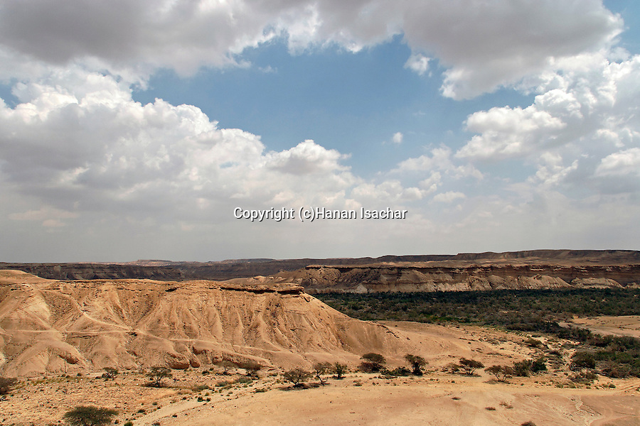 Israel, the Negev desert. A view of Wadi Akrabim and Wadi Zin