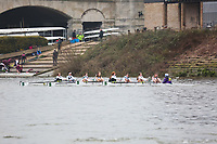 223  Surbiton High School 'Master Splinter'  WJ15<br /> <br /> Quintin Head 2020