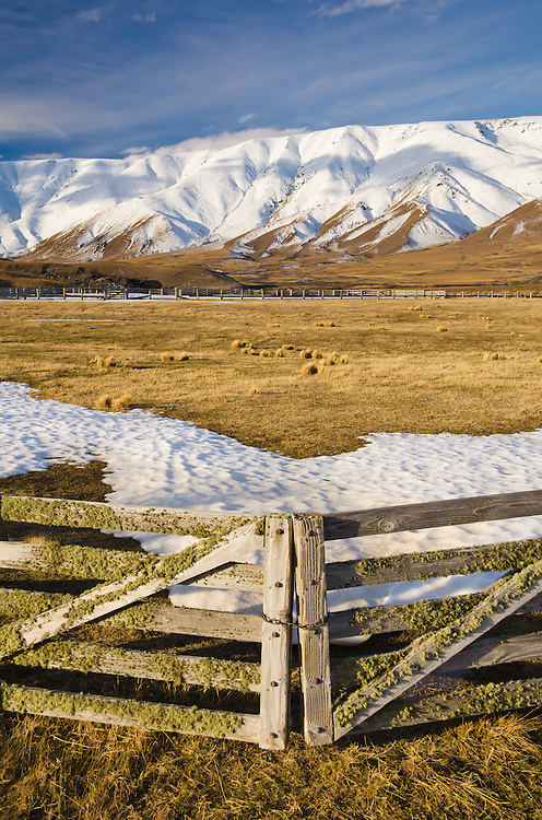 Lichen covered farm gates with snow covered Hawkdun Ranges behind, Central Otago, New Zealand