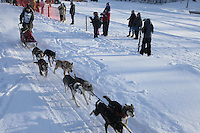 Saturday February 25, 2012   at Knik Lake during the Junior Iditarod start.  Mattie Cobb